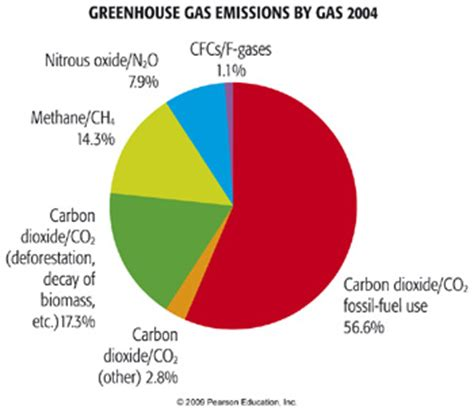 The Causes of Global Warming Essay; Climate Change